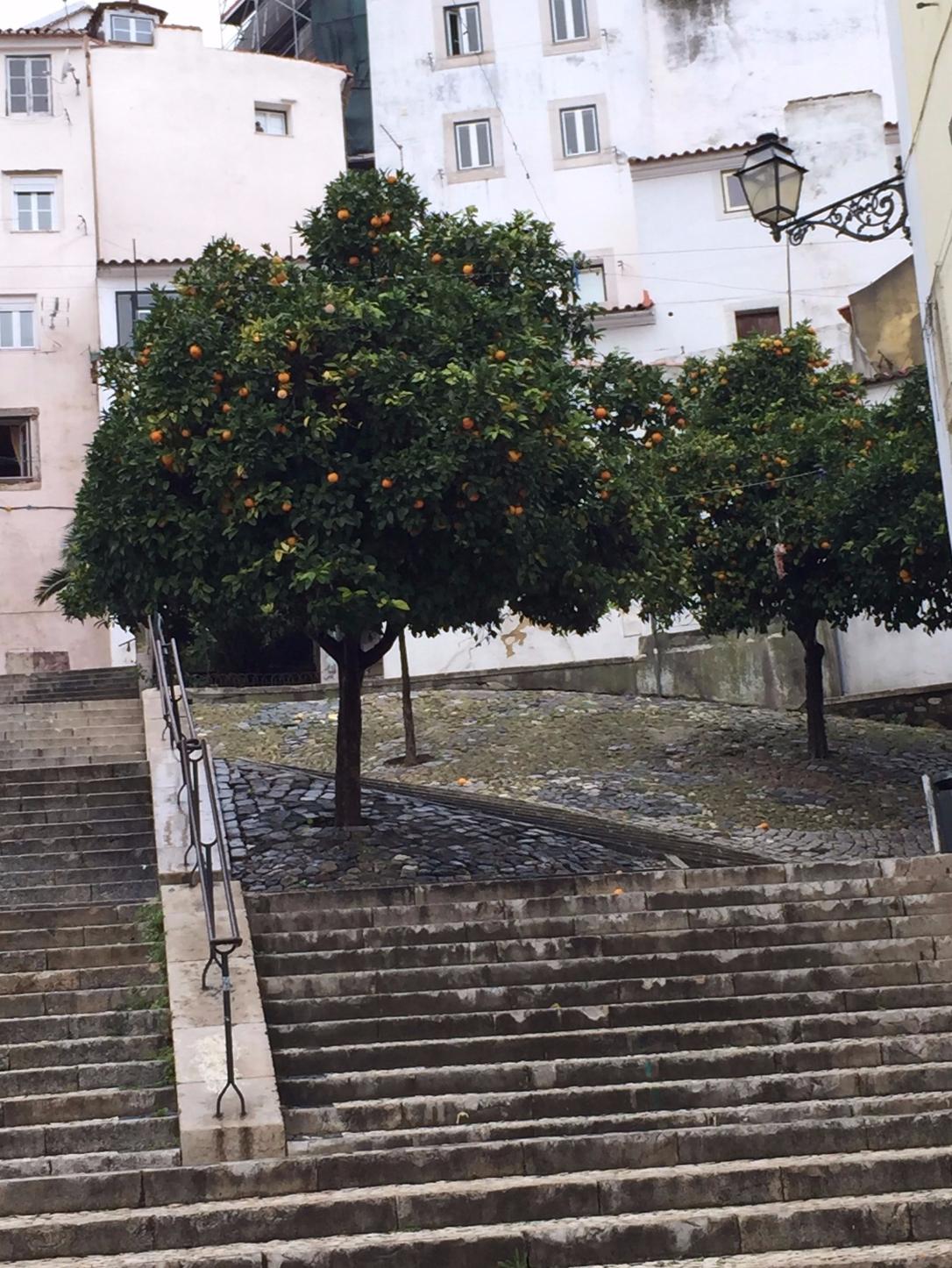 stairs lisbon.jpeg